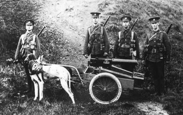 wwi_in_black_and_white_photos (9)