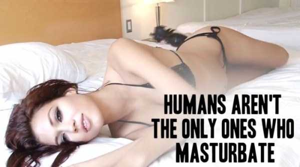 Let's Learn Something About Female Masturbation (20 photos) 11