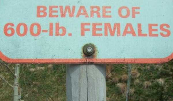 funny-signs (1)