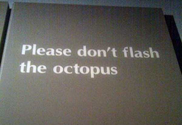 funny-signs (10)