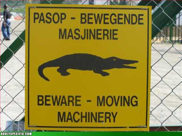 funny-signs (14)