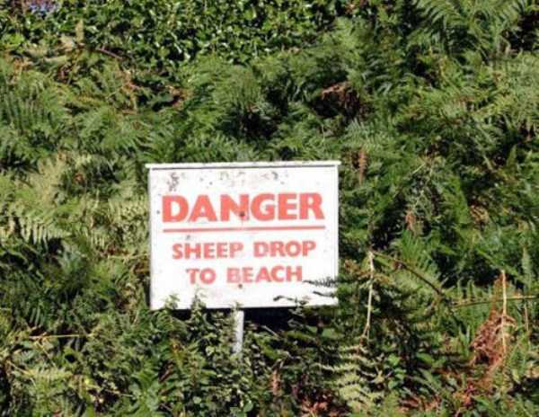 funny-signs (18)