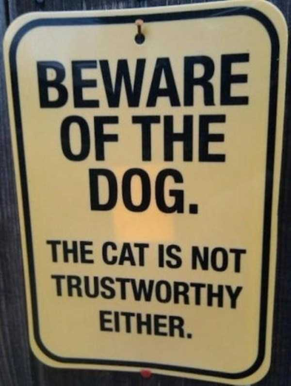 funny-signs (3)