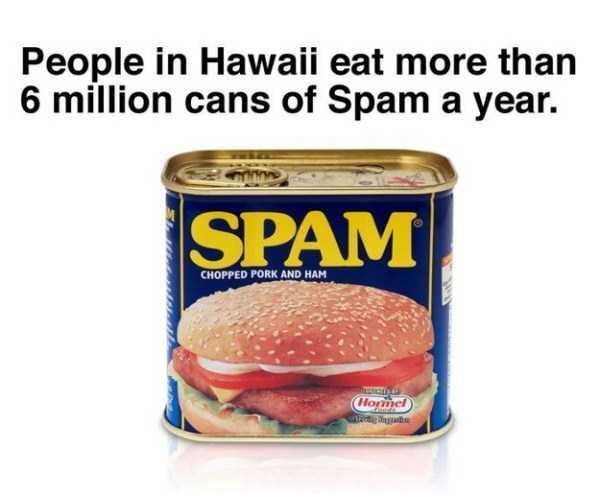 hawaii-facts (16)