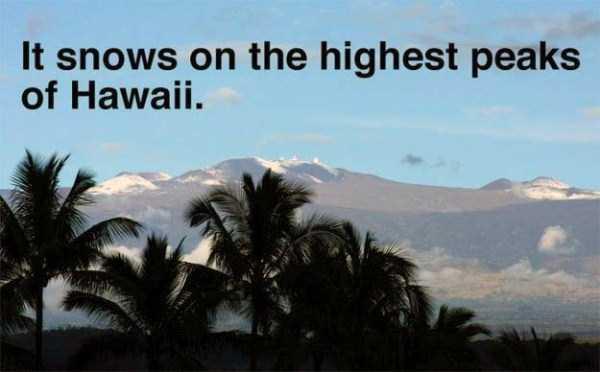 hawaii-facts (3)