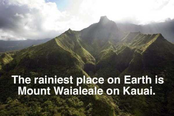 hawaii-facts (6)