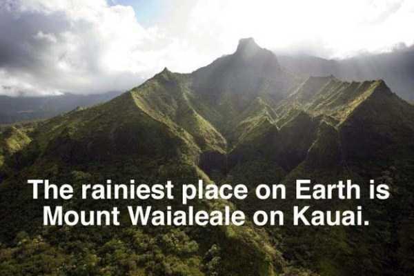 hawaii-facts (6)
