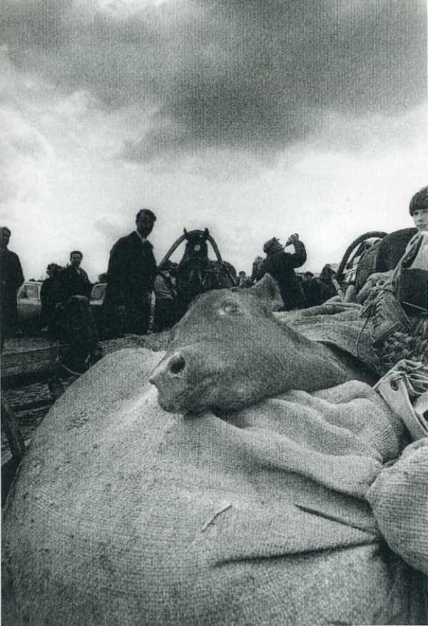 historical-photos-from-russia (107)