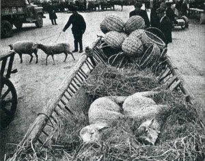 Rare Vintage Black and White Photos of Life in Russia (121 photos) 88