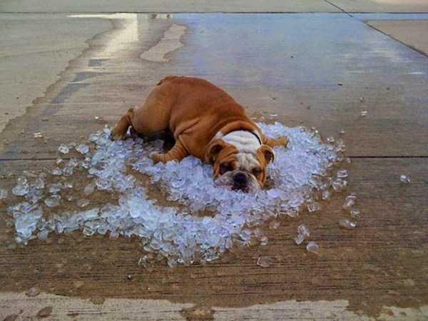 its-hot-outside (12)