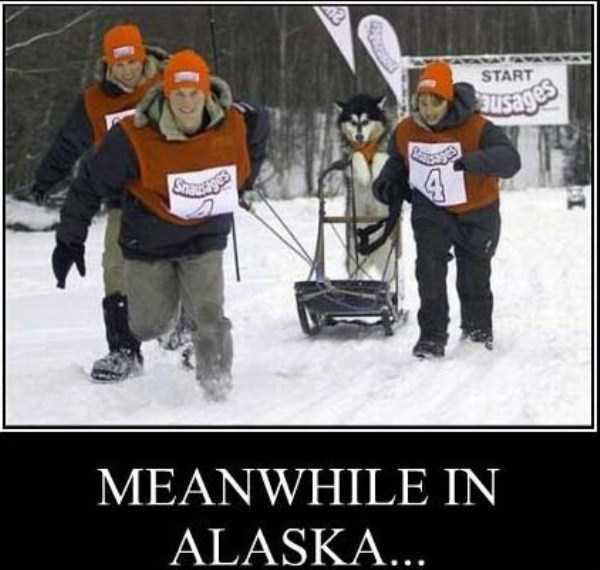 meanwhile-in-alaska (10)