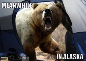 Meanwhile in Alaska (24 photos) 19