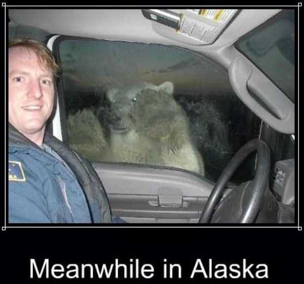 meanwhile-in-alaska (6)