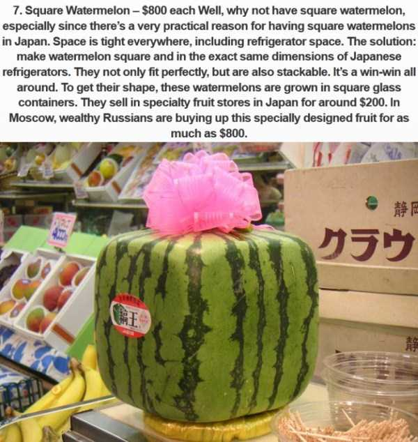 most-expensive-fodd-in-japan (4)