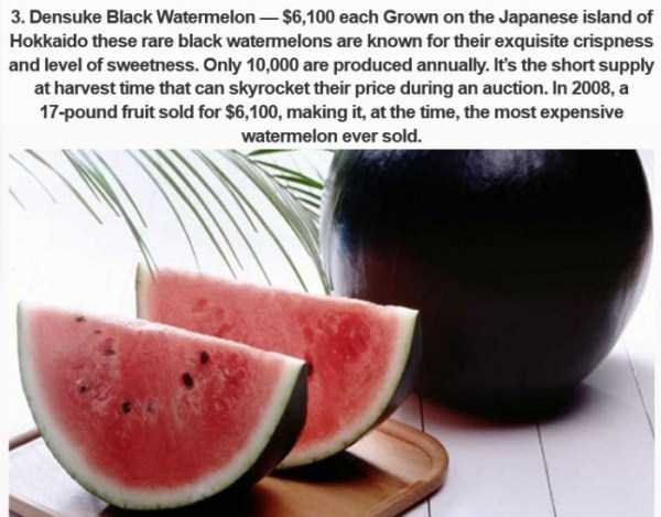 most-expensive-fodd-in-japan (8)