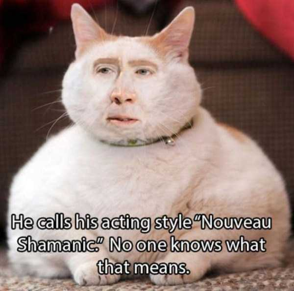 shocking-facts-about-nicolas-cage (4)