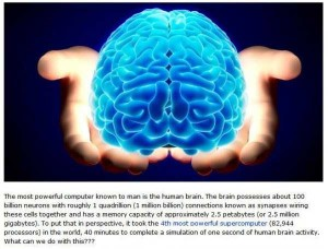 The Human Brain Is Absolutely Brilliant (8 photos) 1