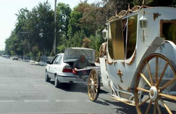 the-strangest-things-you-will-see-on-the-road-57