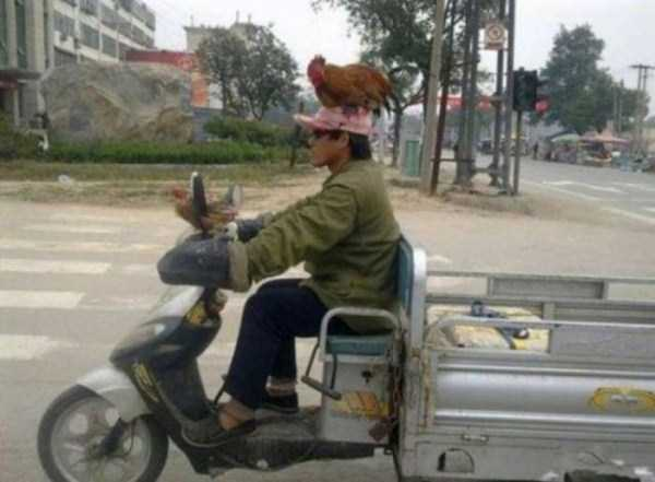 the-strangest-things-you-will-see-on-the-road-58
