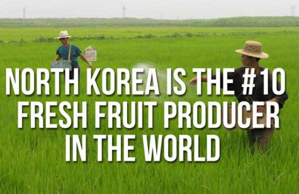 unbelievable-facts-north-korea (8)