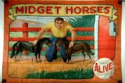 vintage-freak-show-ads (9)