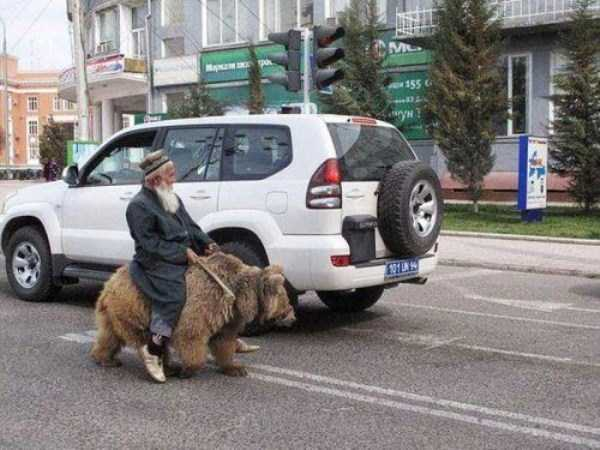wtf-photos-from-russia (21)