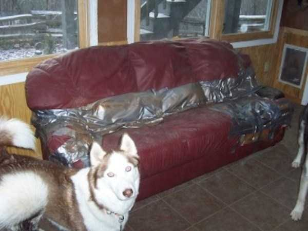duct-tape-fixes-everything (23)