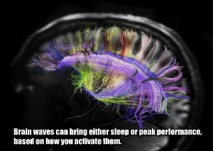 25 Things You Probably Didn't Know About The Human Brain (25 photos) 22