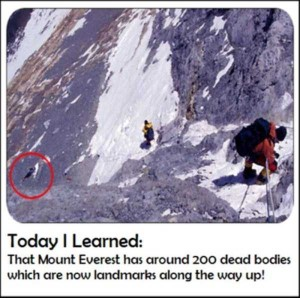 It's Time to Learn Something New (27 photos) 27