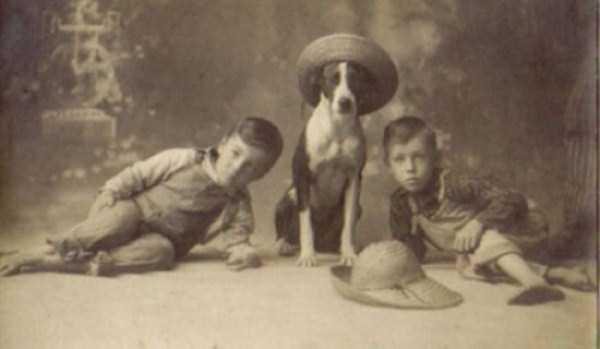 wtf-vintage-animal-pics (24)