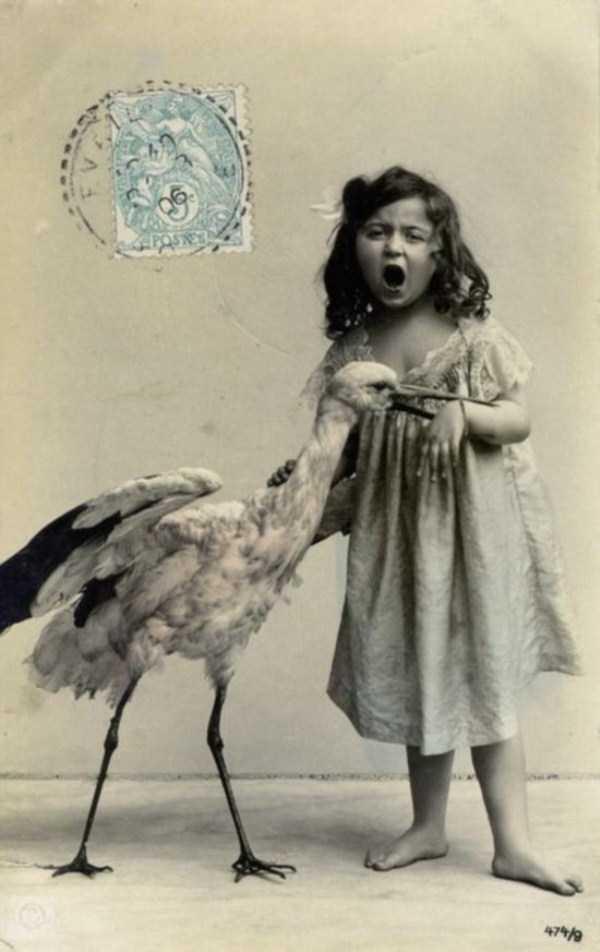wtf-vintage-animal-pics (27)
