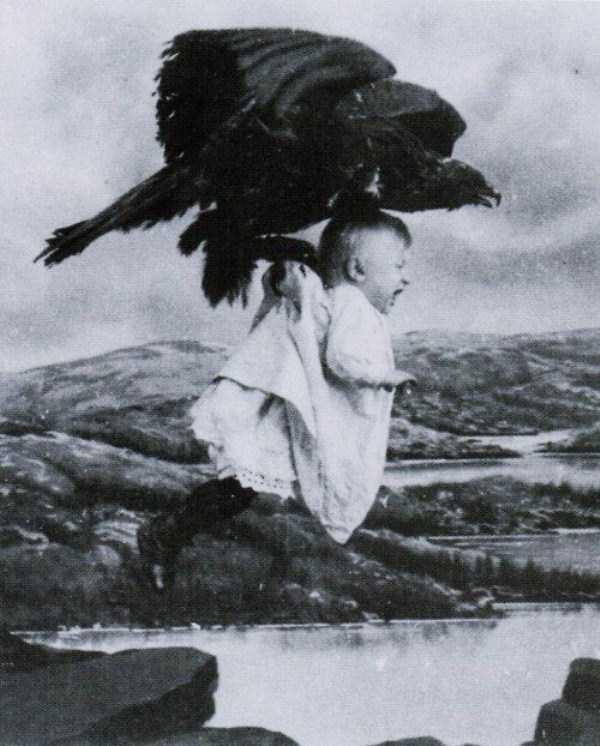 wtf-vintage-animal-pics (38)