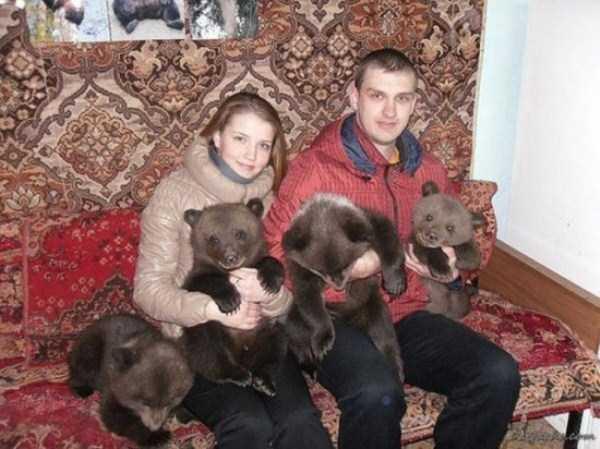 bears-in-russia (20)