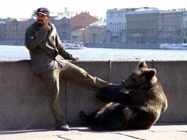 bears-in-russia (22)