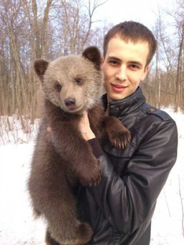 bears-in-russia (28)