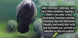 34 Totally Random Interesting Facts (34 photos) 13