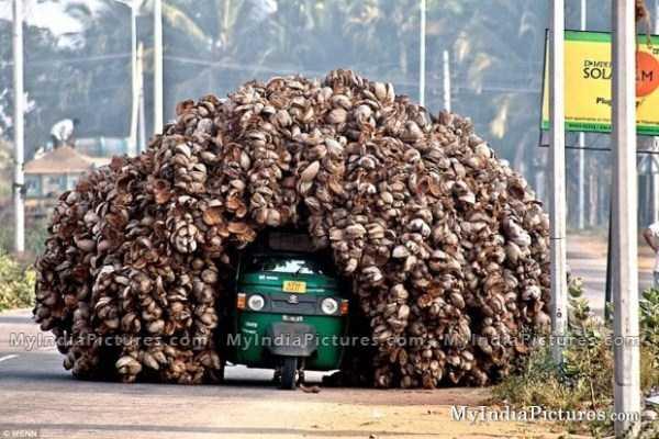 heavy-loads (1)