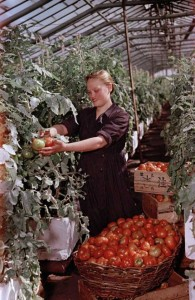 Rare Color Photos of Everyday Life in the Soviet Union in 1950s (30 photos) 16