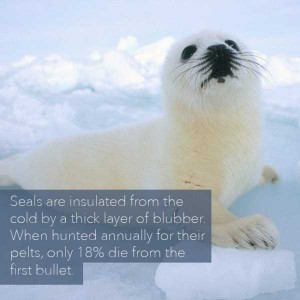 24 Horrific Animal Facts That Will Ruin Your Good Mood (24 photos) 20