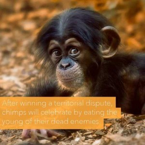 24 Horrific Animal Facts That Will Ruin Your Good Mood (24 photos) 6