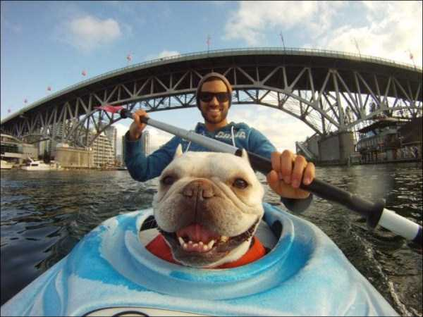 the-best-gopro-pictures-ever (48)