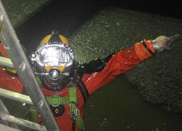 the-dirtiest-diver-ever-8