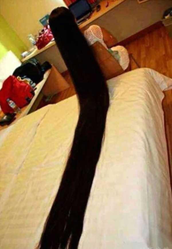 the-wackiest-hairstyles (4)