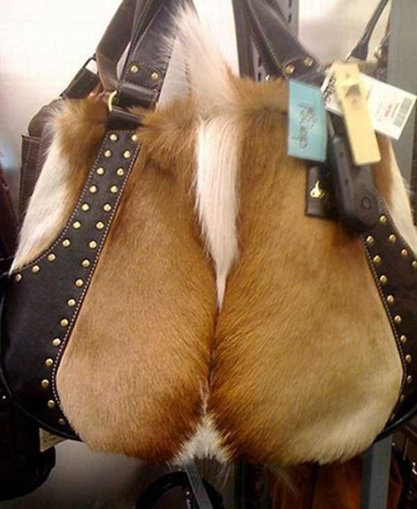 unusual-bags (2)