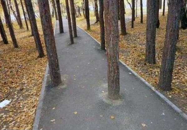 crazy-things-seen-in-russia (15)