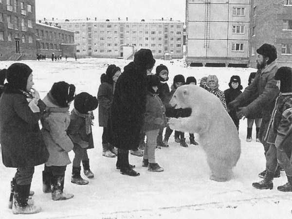 crazy-things-seen-in-russia (2)