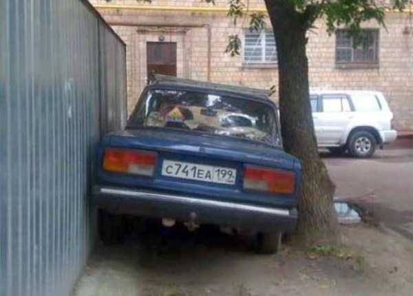 crazy-things-seen-in-russia (3)