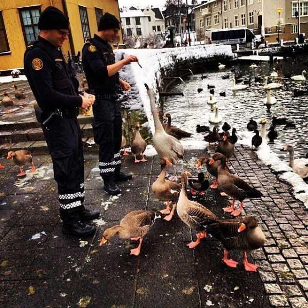iceland-police-instagram (11)