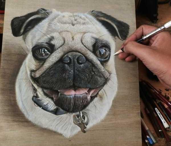 ivan-hoo-realistic-drawings (5)