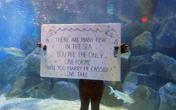 marriage-proposals-fails (1)